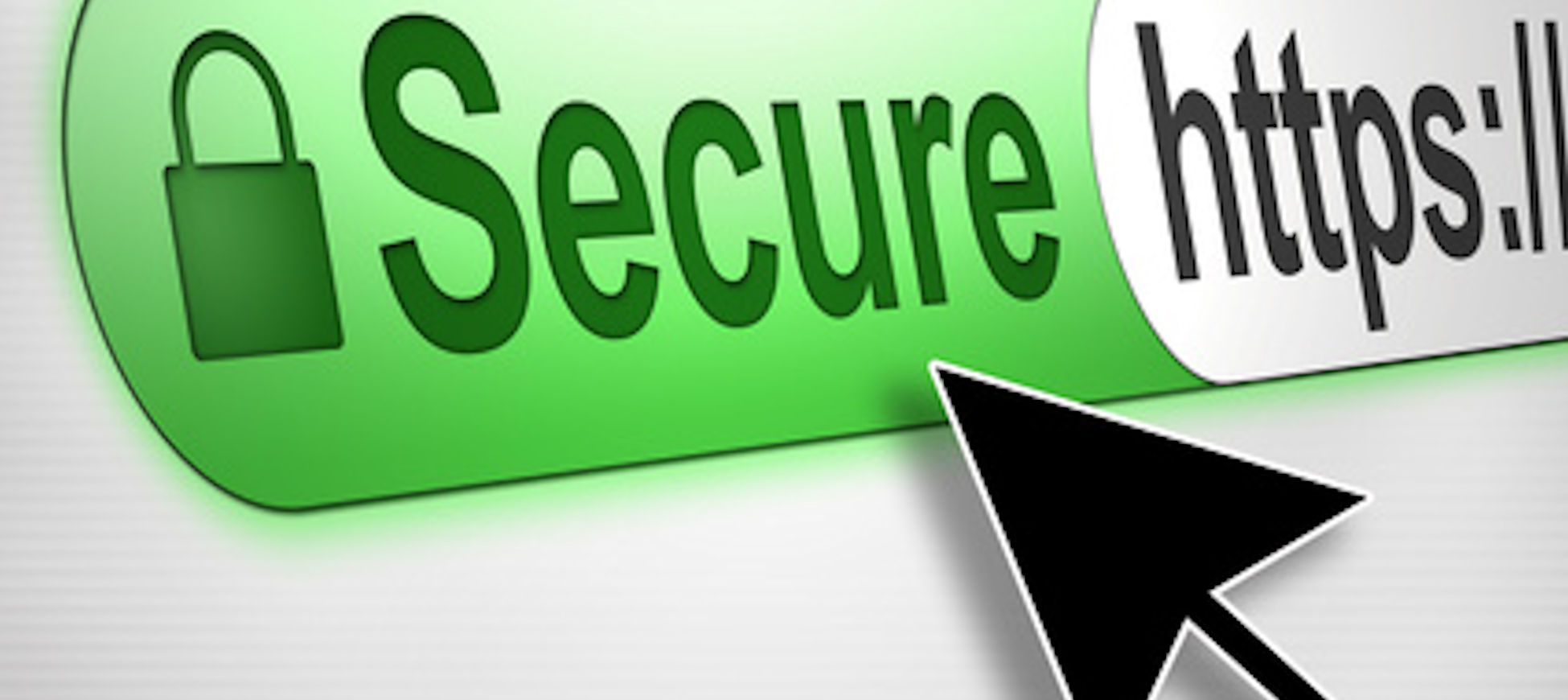 A Secure Socket Layer (SSL) Certificate is used to secure information which is exchanged between your website and your site visitors.